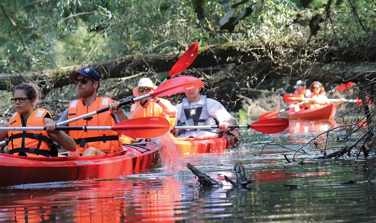 Ha szombat, akkor vízitúra Európa Amazonasán