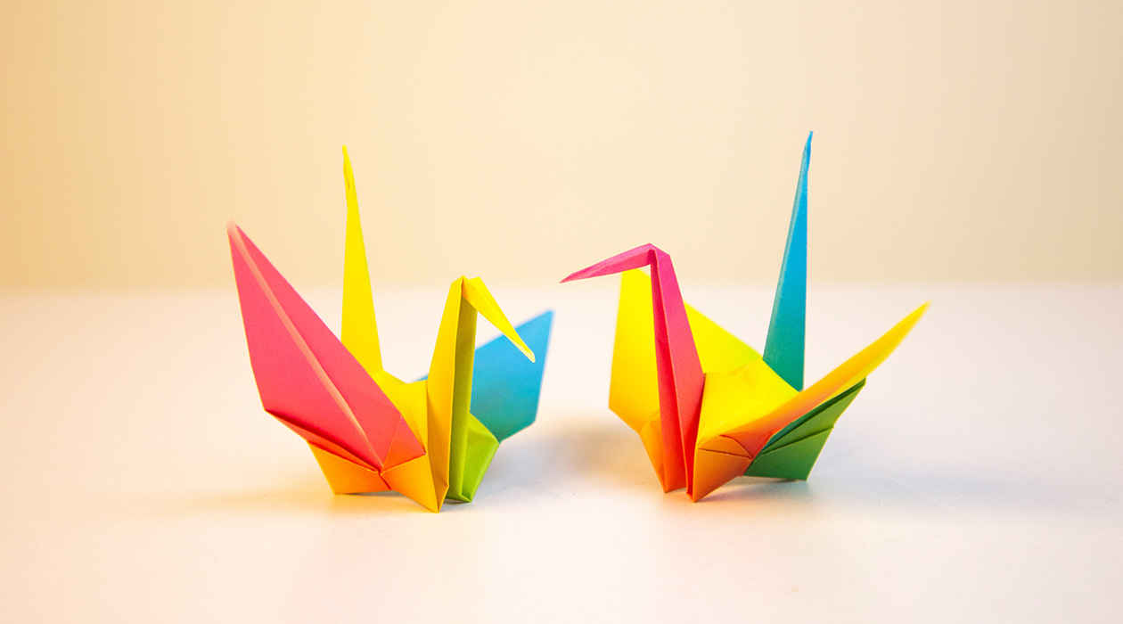 Pécsi origami